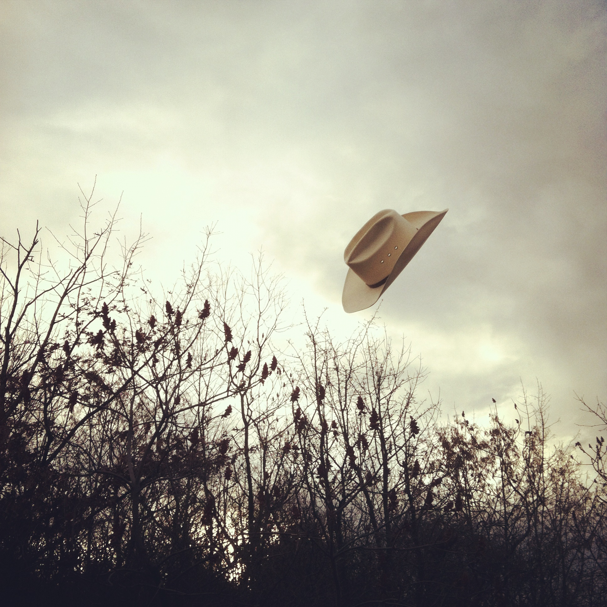 Image of cowboy hat in the air